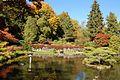Japanese Garden (15877024641).jpg