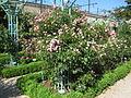 Jardin botanique Dijon 004.jpg