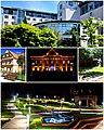 Jastrzebie collage 3.jpg