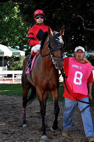 Joe Bravo (jockey) - Bravo in 2011