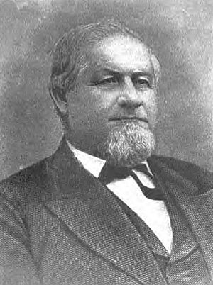 John M. Palmer (politician) - John McAuley Palmer