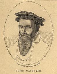 John Caius-2.jpg