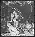 John Hornby using an adze to build a frontier cabin - N-2002-005-0199.jpg