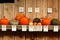 Jucker Farmart - Kürbisausstellung 2012-10-13 16-01-08.jpg