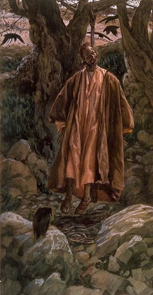 Auricularia auricula-judae - Judas se pend (Judas Hangs Himself), by James Tissot. It is from the belief Judas Iscariot hanged himself on an elder tree that both the specific name auricula-judae and the common name Jew's ear originate.