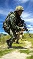 KAMANDAG 2017 Bilateral Training - Image 9 of 9.jpg