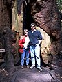 K and me under a giant redwood tree (2399742962).jpg