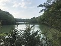 Kamataike Pond in Kasuya Research Forest of Kyushu University 4.jpg