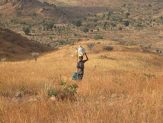 Kapsiki people - Image: Kapsiki woman on hill