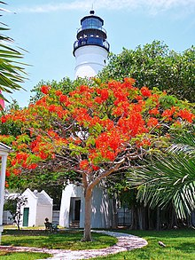 Key West Lighthouse 20080728.jpg