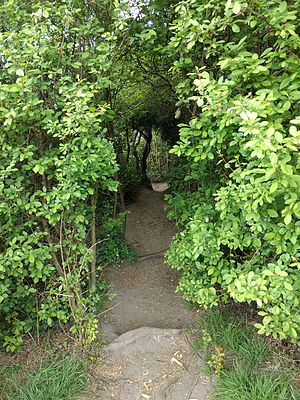 King George's Fields (Monken Hadley) - Footpath through the bushes.