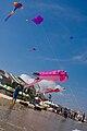 Kite festival Vung Tau 2009, 03.jpg