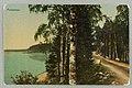 Kivisilta, Sikoinleuka, Silvonniemi, Takaharju, 1903–1910s PK0346.jpg