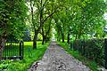 Klagenfurt Hoertendorf Tauschitzvilla Nussbaum Allee Zufahrt 15052009 23.jpg