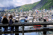 Kodiak Harbor