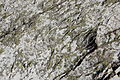 Koli 14052011 akka-koli 03.JPG