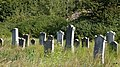 Koronowo - cmentarz ludności żydowskiej - panoramio (26).jpg