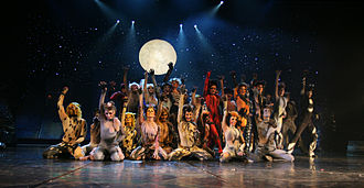 "Cats (musical) - The Jellicle cats gather every year to make the ""Jellicle Choice"", and decide which cat will ascend to the Heaviside Layer and come back to a new life."