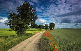 Krajna Landscape Park