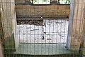 KulTour Parkanlage Sanssouci Friedenskirche-3250.jpg
