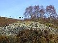 Kyloag Chambered Cairn - geograph.org.uk - 325592.jpg