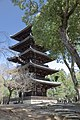 Kyoto, Ninnajii - Cherry blossoms 2015 - panoramio.jpg