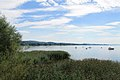 Lac de Morat (12).jpg