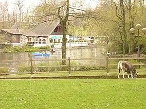 Lac de Sauvabelin - Image: Lac du Sauvabelin, Lausanne boat (470503891)