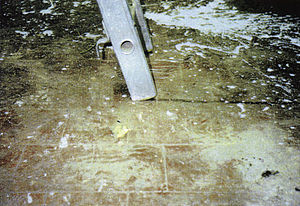 Skid mark - Skid mark from a faulty ladder.