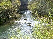 Река Ладон