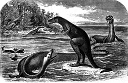 In this drawing there is a snake-like dinosaur. Its flippers are upside-down. It is in shallow water with and another snake-like dinosaur and a dinosaur shaped like a kangaroo standing on a coral reef and a vulture trying to swim. There is an island in the upper left corner with dinosaurs on it and giant ferns on it.