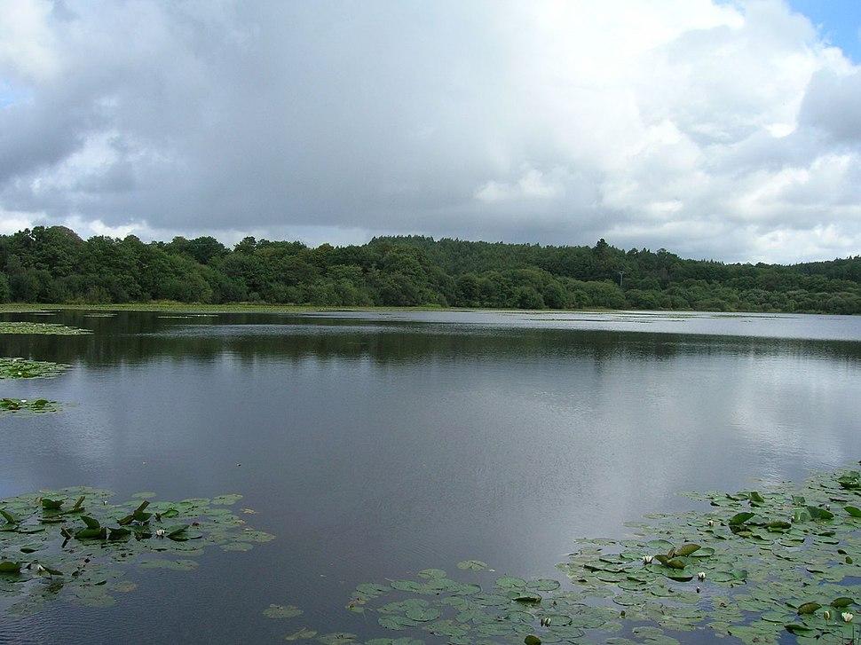 Lago de Sobrado dos Monxes (254924170)