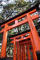 Laika ac Fushimi Inari (8579707830).jpg