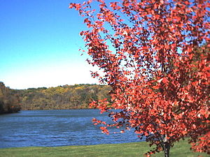 Lake Galena (Illinois) - Image: Lake Galena Galena Territory E of Galena Illinois