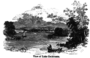 Lake Cochituate - Lake Cochituate circa 1847