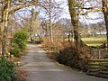 Lane, Gnoll Park, Neath - geograph.org.uk - 1744526.jpg