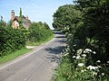 Lane to Bromesberrow Heath - geograph.org.uk - 1335370.jpg