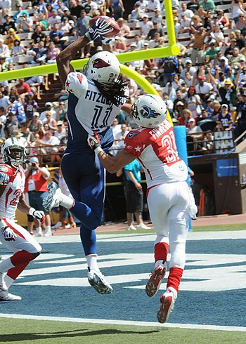 Larry Fitzgerald catches a touchdown pass during the 2009 Pro Bowl in which he earned MVP honors Larry Fitzgerald catches TD at 2009 Pro Bowl.jpg