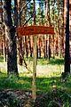Lieberoser Heide Stiftung Naturlandschaften Brandenburg 01.jpg