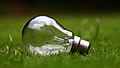 Light bulb on green grass (Unsplash).jpg