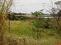 Linda vista no início da rodovia Rodovia Laureano Brogna - SP-351, que liga Bebedouro a cidade de Viradouro. - panoramio (1).jpg
