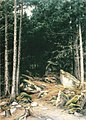 Lindholm, Maisema metsätieltä.jpg