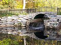 Little Bridge at High Park (69047062).jpg
