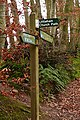 Littleham church path - geograph.org.uk - 1139479.jpg