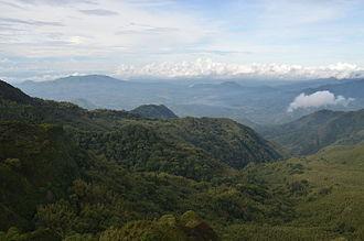 Njombe Region - Livingstone Forest Reserve in Kitulo National Park