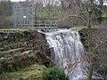 Llyn Coed y Parc - geograph.org.uk - 353753.jpg