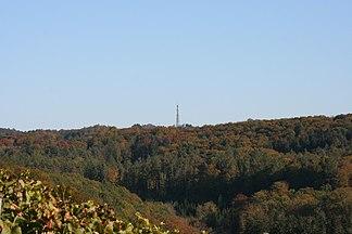 Blick von der Kohlebene bei Farnersberg in Richtung Ostsüdosten zum Stocksberg