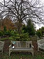 Long shot of the bench (OpenBenches 2854-2).jpg