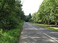 Looking SW on road from Petworth to Balls Cross - geograph.org.uk - 1476354.jpg