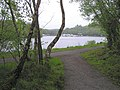 Lough Erne at Castle Archdale - geograph.org.uk - 1307003.jpg